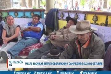 MESAS TÉCNICAS ENTRE GOBERNACIÓN Y CAMPESINOS EL 24 DE OCTUBRE
