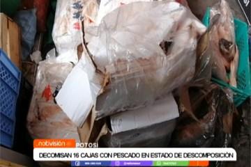 DECOMISAN 16 CAJAS CON PESCADO EN ESTADO DE DESCOMPOSICIÓN