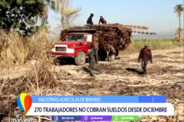 270 TRABAJADORES NO COBRAN SUELDOS DESDE DICIEMBRE