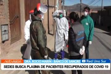 SEDES BUSCA PLASMA DE PACIENTES RECUPERADOS DE COVID 19