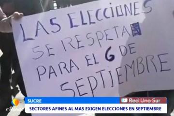 SECTORES AFINES AL MAS EXIGEN ELECCIONES EN SEPTIEMBRE