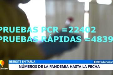 NÚMEROS DE LA PANDEMIA HASTA LA FECHA
