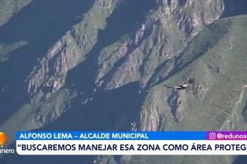 POSINOTICIA: IMPULSAN LEY MUNICIPAL PARA PROTEGER AL CÓNDOR ANDINO EN TARIJA
