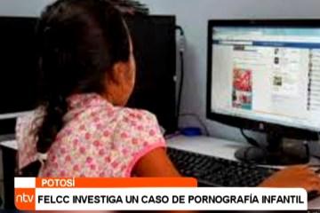 FELCC INVESTIGA UN CASO DE PORNOGRAFÍA INFANTIL