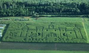 2016 initial maze final