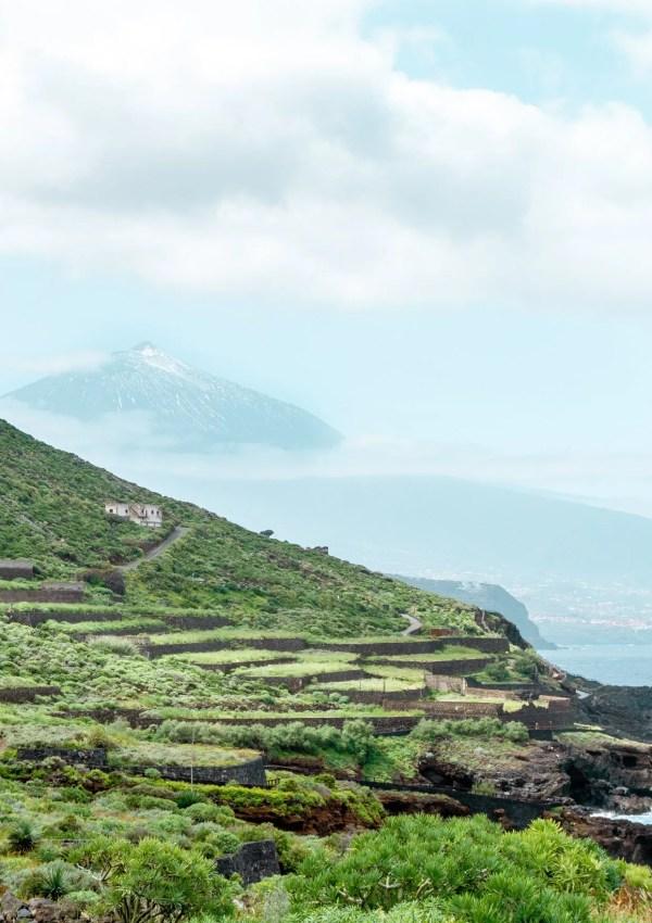 The Gorgeous Mirador de Las Breñas Hike to Costa Acentejo