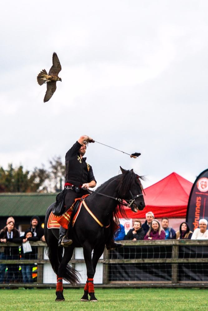 Jonathan Marshall at the Falconry & Countryside Show, Stonham Barns, Suffolk