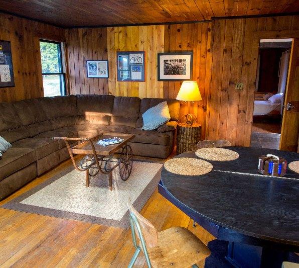 Barn Apartment Living Room