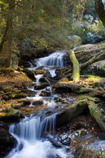 Shoal Falls at Reeb Ranch