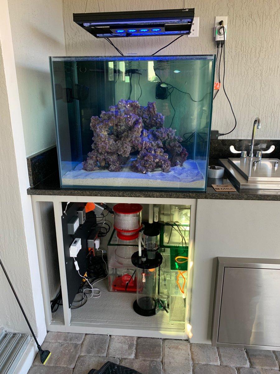 outdoor patio reef tank reef2reef