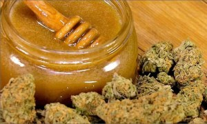 Cannabis With Honey