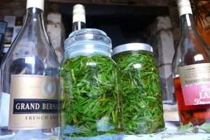 Making Cannabis Tinctures