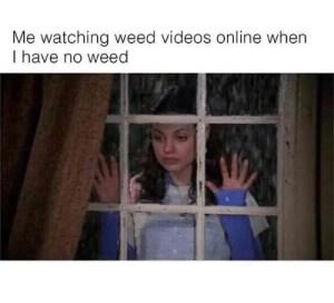 Cool weed meme 10
