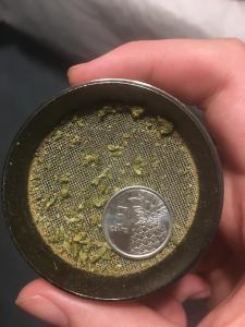 Coin Trick in Grinder