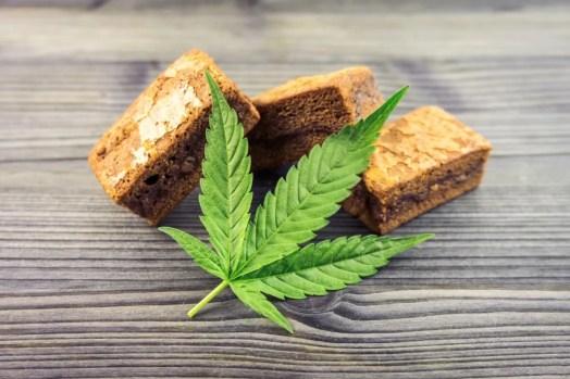 Pet Often Eat Weed Hash Brownies
