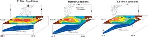 El Nino Southern Oscillation | Reef Resilience