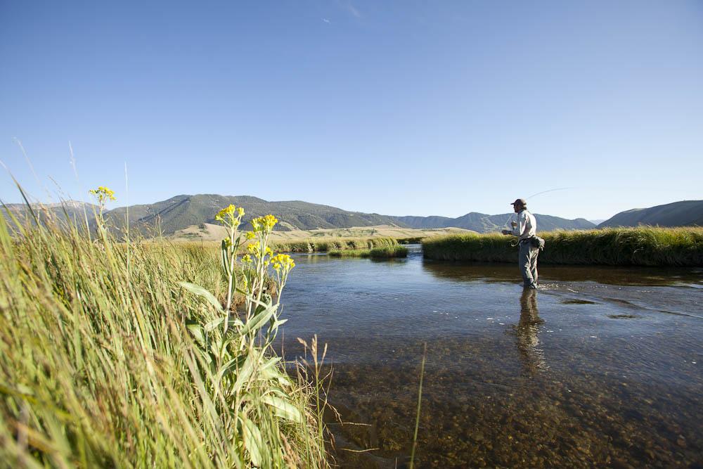 Jackson Hole Wyoming Fly Fishing Flat Creek Reel Deal