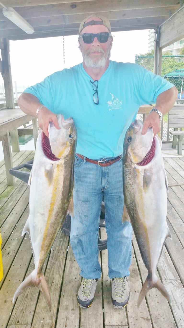 Results of a jigging trip last week. Limit of Amberjack...