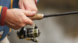 best spinning reels for the money