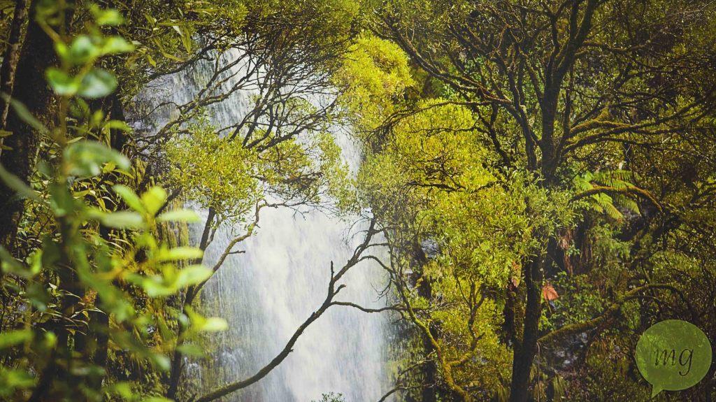 Erskine_falls_waterfall