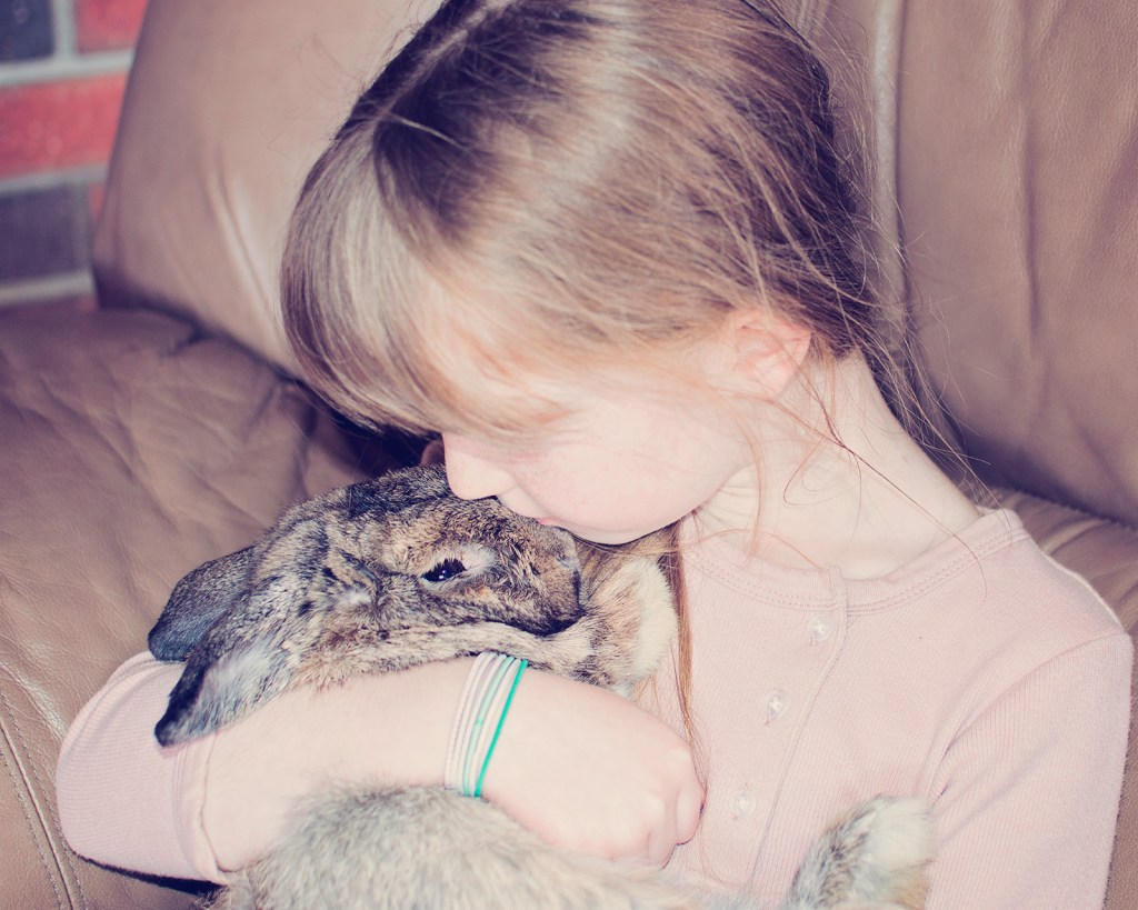 Easter15-summer-bunny