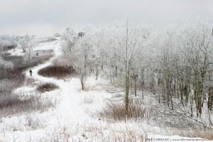 Man hiking Appalachian Trail in winter snow