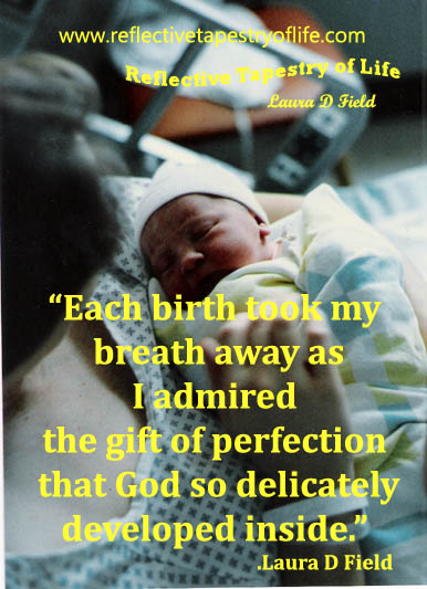 """Each birth took my breath away as I admired the gift of perfection that God so delicately developed inside.:  ~  Laura D Field"