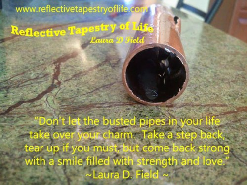 """Don't let the busted pipes in your life take over your charm.  Take a step back, tear up if you must, but come back strong with a smile filled with strength and love.""  ~ Laura D Field"