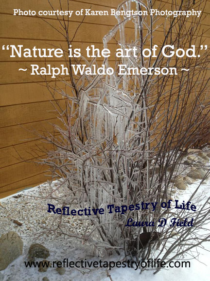 Natures Frozen Beauty Reflective Tapestry Of Life