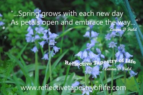 """...Spring grows with each new day As petals open and embrace the way...""   Taken from a portion of Laura's poem called ""Insight of Spring"" ~ Laura D. Field ~"