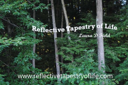 Reflective Tapestry Of Life Awaking Sights4