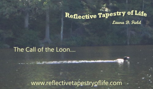 The call of the Loon...