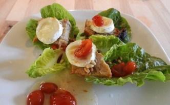 Mixed salat med gedeost og syltede hyben