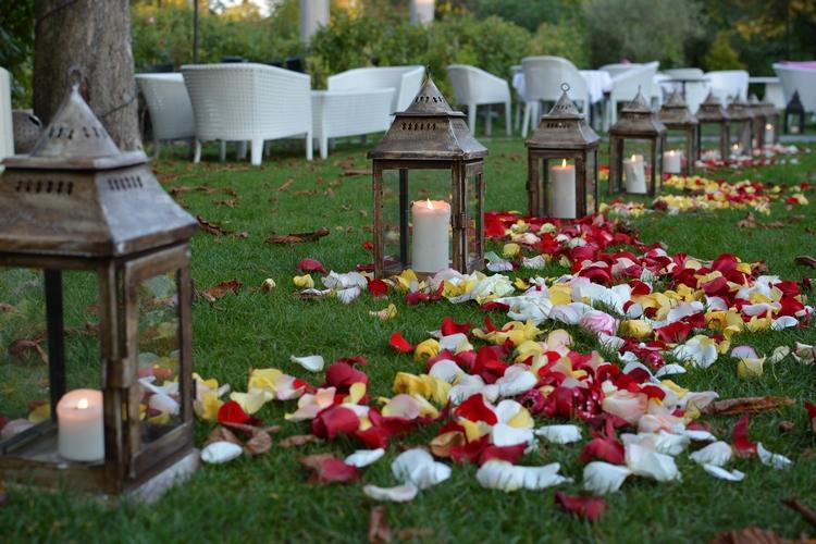 allée pétales rose reflets fleurs fleuriste vincennes paris