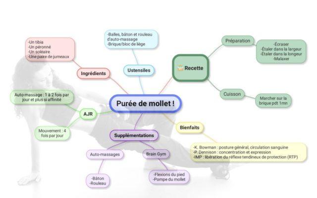 Le schéma récapitulatif de la purée de mollet