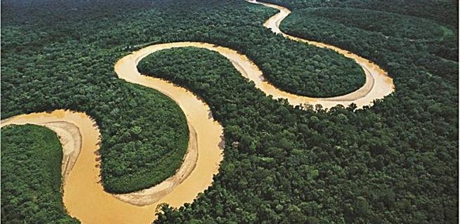 animales-amazonas-pirana-655x368