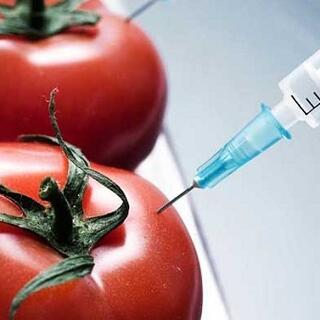 Rosiile modificate genetic pentru a vindeca HIV si hepatita B