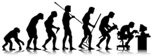 evolution of sedentary posture