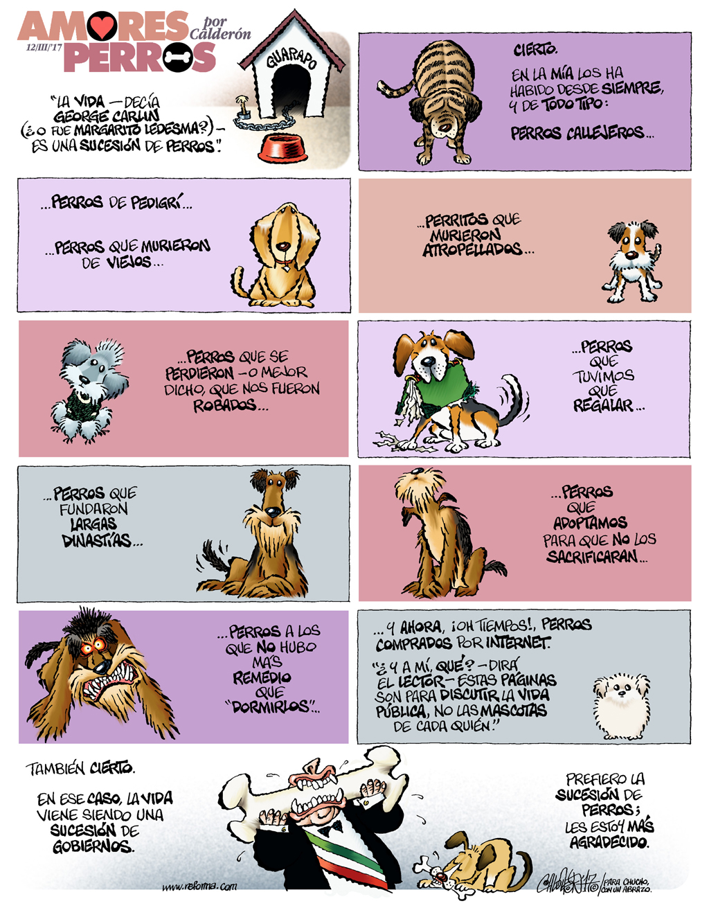 Amores perros - Calderón
