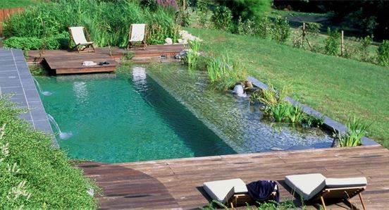 piscina ecologica con auto depuración con plantas que oxigenan el agua