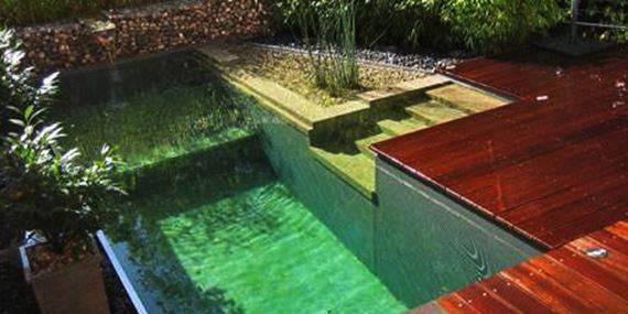 piscina natural No es un medio estéril hay bacterias en equilibrio ecológico