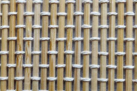 bambú_2