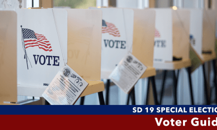 Senate District 19 Special Election Voter Guide