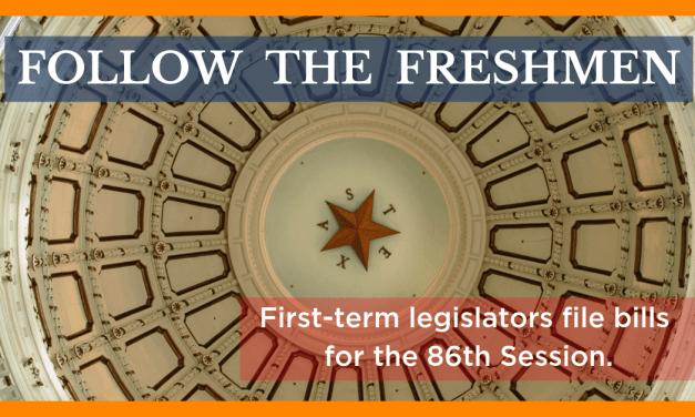 Follow the Freshmen: New Legislators Seek to Make Mark Filing Bills