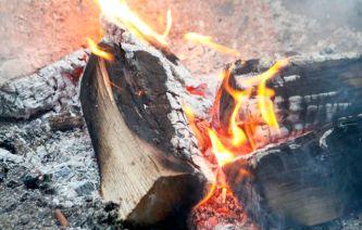 Michael Pollans Buch beginnt mit dem Element Feuer, bzw. dem Grillen ganzer Schweine (BBQ)