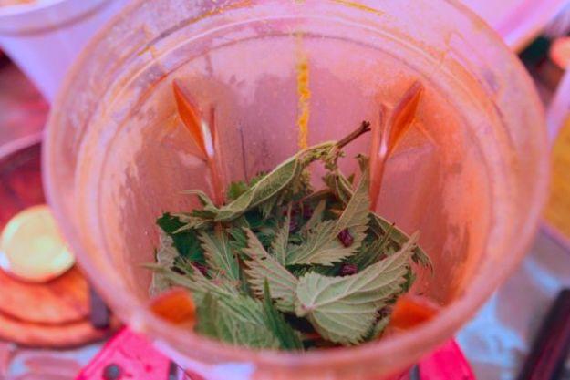 Immunstärkende Wildkräuter-Kurkuma -Smoothies gibt's bei Phytamin B