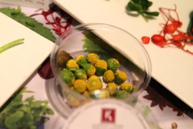 Sechuan Buttons® sind die Blüten des chinesischen Szechuan Pfeffers - unfassbar!