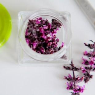 Versuch mit Thai-Basilikum Blüten - Aroma super, Farbe weniger (Tipp: in kaltem Wasser nur etwa 3 Stunden ziehen lassen)