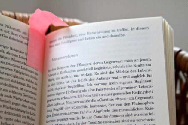 Meine Empfehlung: das Buch immer nur in geringer Dosierung lesen -genießen, wäre treffender