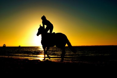 A silhouette of a person riding on a horse with the sunset in the backdrop.